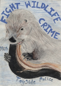 A drawing of an otter by a P6 Tayside pupil